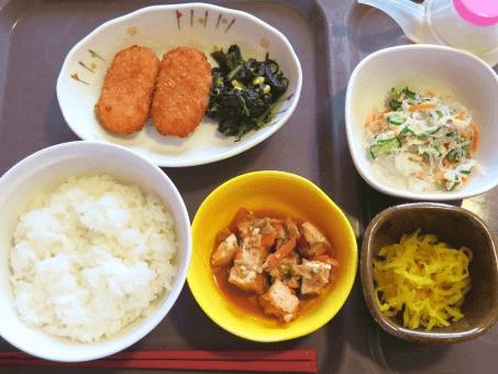 タンパク制限食