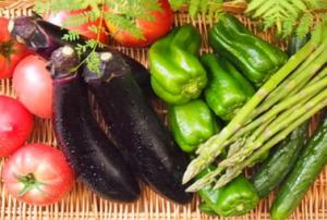 五大栄養素以外に摂取すべき栄養素