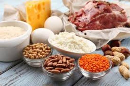タンパク質ってどんな働き?宅配弁当で手軽に摂取しよう