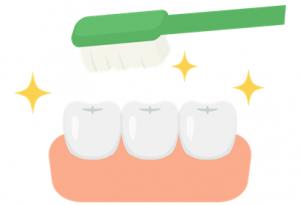 虫歯を予防するためには